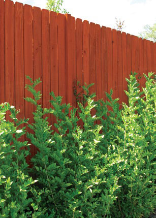 MicroPro-Sienna-preservative-treated-pine-arsenic-free-fence